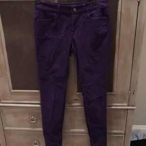 Purple, velvet, women's pants. Ann Taylor